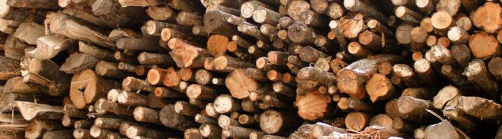 Дровяная древесина игорбыль
